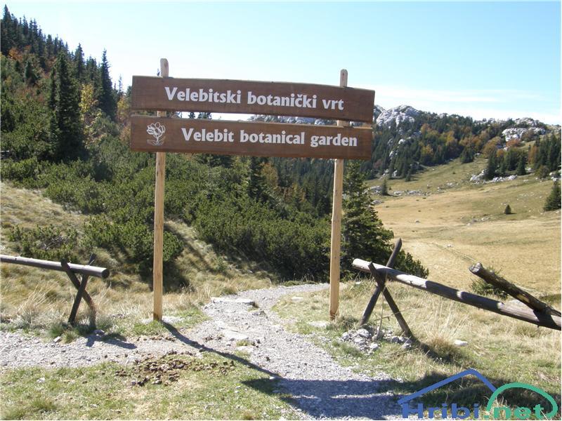 Parkirisce Pri Botanicnem Vrtu Veliki Zavizan Direktna Pot Slika