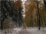 Narodni park Češka/Saška ŠvicaZimsko-jesenska idila nad Kirniztschklamm.