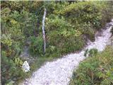 Krnička gora iz Matkove Krnicetole je odcep za Krničko goro