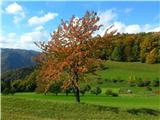 Polhograjska Grmada in Toščdrevo  v jasenski barvi