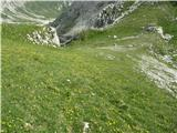 Creton di Tul (2287) in Creta Forata (2462)preko rumenih preprog