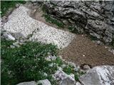 Bavšica - Pelc nad Kloncami - Pod Špičkom - Bavški Grintavec - Bavšicapod steno sneg še kar vztraja