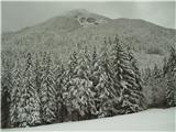 Goli vrh  1787 mnmtja gor
