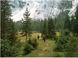 Prečenje Via de la Vita - Vevnica - Strug - Poncezačnemo po gozdni cesti levo čez mostiček in potem po dobro označenih poteh pridemo na planino Alpe Vechia