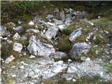 Slovenske planine v vseh letnih časihZ vseh koncev priteka na planino voda.
