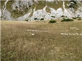 Slovenske planine v vseh letnih časihRavnica je kar obsežna.