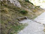 Slovenske planine v vseh letnih časihNa levi strani je celo klopca za počitek.