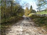 Slovenske planine v vseh letnih časihŽe po cesti . Na obeh straneh ceste so ti travnički oziroma pašniki. Večinoma so veliki na zgornji strani ceste.
