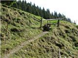 Slovenske planine v vseh letnih časihPrehod na pašno območje planine Dovška Rožca.