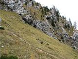 Slovenske planine v vseh letnih časihStrme trave na planini.