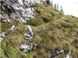 Slovenske planine v vseh letnih časihNa drugi strani planine.