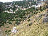 Slovenske planine v vseh letnih časihPogled na zgornji del planine , kjer se povzpnemo na Mokrico.