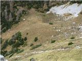 Slovenske planine v vseh letnih časihOsrednji del planine Ovčarije.