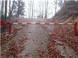 Slovenske planine v vseh letnih časihPridemo do nove ceste, ki bi nas zelo hitro privedla na planino.