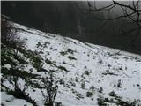 Slovenske planine v vseh letnih časihVečina planine je v snegu.