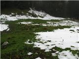 Slovenske planine v vseh letnih časihPlanina je dokaj velika.