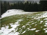 Slovenske planine v vseh letnih časihPaše je dovolj. Planina je ograjena.