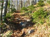 Slovenske planine v vseh letnih časihTaka je pot na začetku.