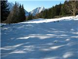 Slovenske planine v vseh letnih časihLep pašnik na planini.