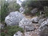 ZelenicaNa ovinku lahko zavije desno k spomeniku žrtev plazov.