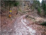 Slovenske planine v vseh letnih časihTu na desno zavije gorska cesta na Pokljuško planino.