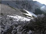 ZelenicaPri ruševju pod kočo na Zelenici celo malo čez pomladni sneg.