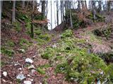 Slovenske planine v vseh letnih časihOpuščen kolovoz , ki se uporablja kot peš pot.