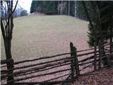 Slovenske planine v vseh letnih časihKolovoz poteka ob ograjenih pašnikih Pokljuške planine.