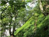 Krnička gora iz Matkove KrniceNa spodnji lovski poti se prične jasniti