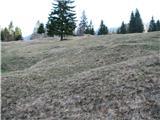 Slovenske planine v vseh letnih časihDo hleva in koče na Potoški planini je precej obširen pašnik.