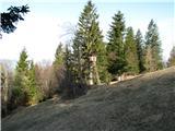 Slovenske planine v vseh letnih časihLovci so tudi prisotni.