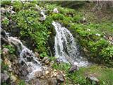 ZelenicaIzvir Završnice je izredno vodnat.