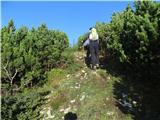 Veliki vrh, Dleskovecpo lepo usekani poti proti planini Dolge trate