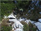 Veliki vrh, Dleskovecpo grabnu dol
