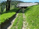 Slovenske planine v vseh letnih časihPo kolovozu prek njihovih pašnikov.
