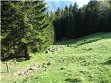Slovenske planine v vseh letnih časihSamo še to slikco imam od planine-šele doma sem ugotovil, da je to planina.