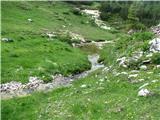 VernarTako prijetno teče potoček  proti planini Malo polje.
