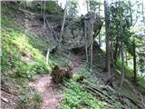 Slovenske planine v vseh letnih časihVeterna ujma poti ni prizanesla. Sedaj je že očiščena.