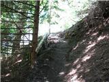 Slovenske planine v vseh letnih časihVmes celo varovan odsek.