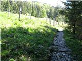 Slovenske planine v vseh letnih časihLesa na pašnik pod Zajmenovimi Pečmi.