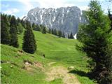 Slovenske planine v vseh letnih časihPlanina se razpira.