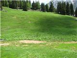 Slovenske planine v vseh letnih časihPašniki so lepi.