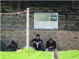 Slovenske planine v vseh letnih časihNisem bil sam.