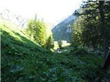 Slovenske planine v vseh letnih časihNad potočkom se vidi del osredne planine s stani.