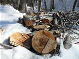 Bogatin in KomnaOgromne količine lesa na tleh