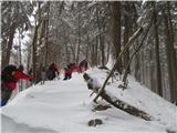 Mrzli vrh (Loncmanova Sivka)pot nekaj časa sledi grebenu