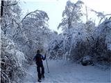 VremščicaZima, zima bela (1)