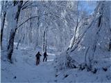 VremščicaZima, zima bela (3)