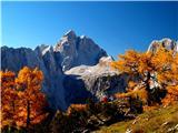 Čudovita narava