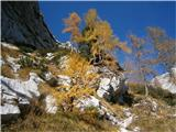 Turska gora čez Kotliški graben in ŽmavčarjiBarve jeseni